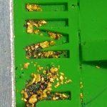 Gold Rat – 6″ mini Cells Dream mat Sluice